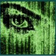 Ile danych przetwarza ludzkie oko?